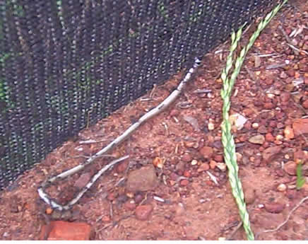 how to build a snake proof fence